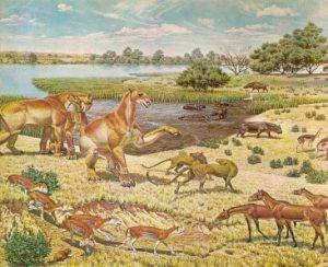 20 Milioni di anni fa – Miocene inferiore